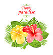 Illustration Beautiful Colorful Hibiscus Flowers Blossom And Tropical Leaves, Isolated On White Background - Vector