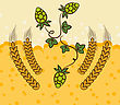 Illustration Beer Background With Hop Leaves And Wheats - Vector stock vector