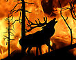 Deer Running Away From Fire In Wood stock image