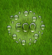 Illustration Eco Friendly Background With Water Drops On Fresh Green Grass Texture - Vector stock illustration