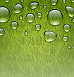 Illustration Eco Friendly Background With Water Drops On Fresh Green Grass Texture - Vector