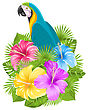 Illustration Parrot Ara, Colorful Hibiscus Flowers Blossom And Tropical Leaves, Isolated On White Background - Vector