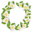 Illustration Round Frame Made In Chamomile Flowers. Spring Nature Card - Vector
