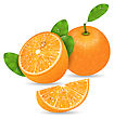 Illustration Set Orange Fruits, Cut And Slices, Ripe Citrus - Vector