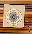 Illustration Shooting Range Target With Bullet Holes - Vector