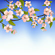 Illustration Spring Background Of A Blossoming Tree Branch With Flowers - Vector