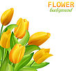 Illustration Spring Beautiful Flower Card With Yellow Tulips - Vector