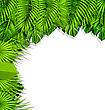 Illustration Summer Nature Background With Green Tropical Leaves - Vector