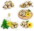 Jerusalem Artichoke Tubers, Yellow Flowers, Round Wooden Board, A Bottle Of Vegetable Oil, Parsley stock image
