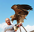 KAMYANETS-PODILSKY, UKRAINE- JUNE 2: Undefined Young Man With Hunting Eagle During Forpost (The Outpost) Festival Of Medieval Culture On June 2, 2012, Kamyanets-Podilsky, Ukraine stock photography