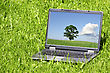 Laptop In A Green Grass On A Sunny Day stock photography