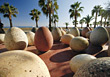 Trees Large Stone Eggs, Palm Trees stock photo