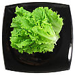 Saturated Leaf Of Lettuce On White Background. Isolated Over White stock photo
