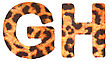 Leopard Fur G And H Letters