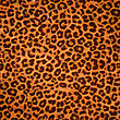 Leopard Skin Background Or Texture. Large Resolution