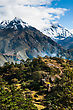 Lhotse, Lhotse Shar Peaks Village And Forest In Himalayas. Hiking In Nepal stock photography