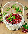 Lingonberry With Leaves In A White Wicker Basket, Twigs With Leaves And Red Ripe Berries Cranberries Against A Wooden Boardberry On