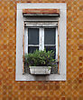 Lisbon Window stock photo