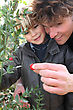 Little Boy And Father Picking Berries Of A Plant stock photo