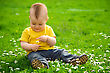 Positive Little Boy Is Sitting On Green Meadow And Plays With Daisy stock photo
