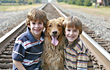 Little Boys on the Railroad Tracks with Dog stock image