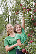 Little Girl and Mom Picking Apples stock photography
