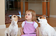 Canine Little Girl With Her Dogs stock photo