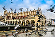 Flies Lot Of Doves In Krakow Old City. Market Square. Poland stock photo