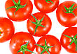 Lush Tomatos. Isolated Over White stock photo