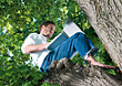 Man Sitting In Tree Working On Laptop stock photography