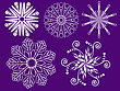 Many Different White Snowflakes On A Purple Background