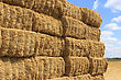 Many Haystacks Piled On A Field Of Wheat