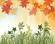 Meadow Background With Maple Leaves. All Objects Are Separated. Vector Illustration With Transparency. Eps 10
