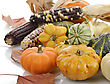 Mini Pumpkins And Indian Corn ,Close Up stock image