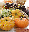 Mini Pumpkins And Indian Corn ,Close Up stock photo