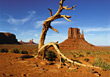 Monument Valley National Park Arizona stock photo