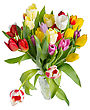 Motley Bouquet Of Tulips In A Crystal Vase On A White Background, Isolated stock photo