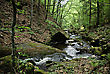 Mountain Stream Flowing Through Moss Covered Rocks In The Forest stock photography