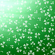 Natural Shamrock Texture. Cartoon Clover Leaves Isolated On Green Background. Patricks Day Banner