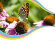 Insects NAture Card With Decor Background.Butterfly On Flower stock image