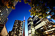 Night Photo Toronto City Downtown Urban Tower stock photo
