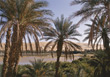 Oasis, Sahara, Africa stock photography