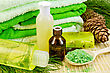 Oil In A Bottle, Cedar Cones With Branch, Two Green Homemade Soap, Towels, Salt In The Wooden Spoon, Lotion, Shower Gel On A Bamboo Mat stock photography