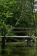 Old Primitive Wooden Bridge On Footpath Trough Wild Forest At Summer Sunny Day stock photography