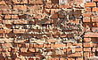 Old Red With Hollows A Brick Wall Of The House A Structure stock photo