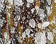 Old Wall With Paint Drippings And Splashes.Abstract Background stock photo