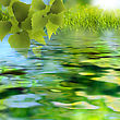 On The Lake. Abstract Summer Backgrounds stock photography