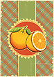 Orange Fresh Fruits.Vintage Label Illustration On Old Paper For Design