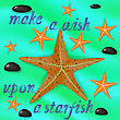 Orange Starfish And Stones On Azure Wave Water Background. Positive Summer Banner With Grunge Lettering