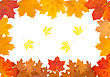 Ornament From Autumn Leaves Of Different Colour, From Different Trees stock image